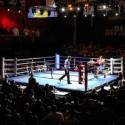 Boxeo Mundial para este sábado 12-07-2014