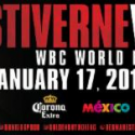 BERMANE STIVERNE AND DEONTAY WILDER TALK TRAINING CAMP AND THEIR PLACE IN HEAVYWEIGHT HISTORY